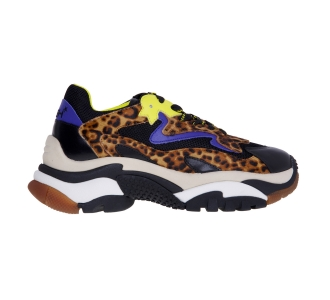 Chunky sneaker ash addict animalier Nero-lavagna